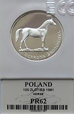 100 zł Koń 1981 - Grading PR62 - monety