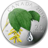 Kanada - 2010, 20 dolarów - Kropla deszczu - Liść klonu - monety