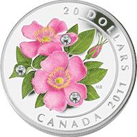 Kanada - 2011, 20 dolarów - Dzika róża