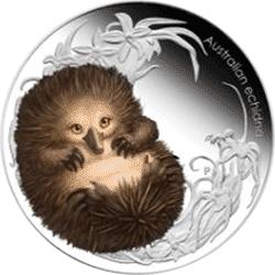 Australia - 2013, 50 cents - Dzieci Buszu II - Echidna
