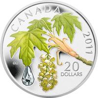 Kanada - 2011, 20 dolarów - Kropla deszczu - Liść klonu