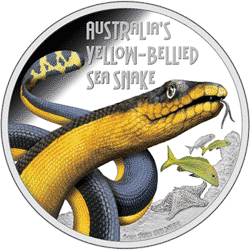 Tuvalu - 2013, 1 dolar - Wąż Morski - Sea Snake